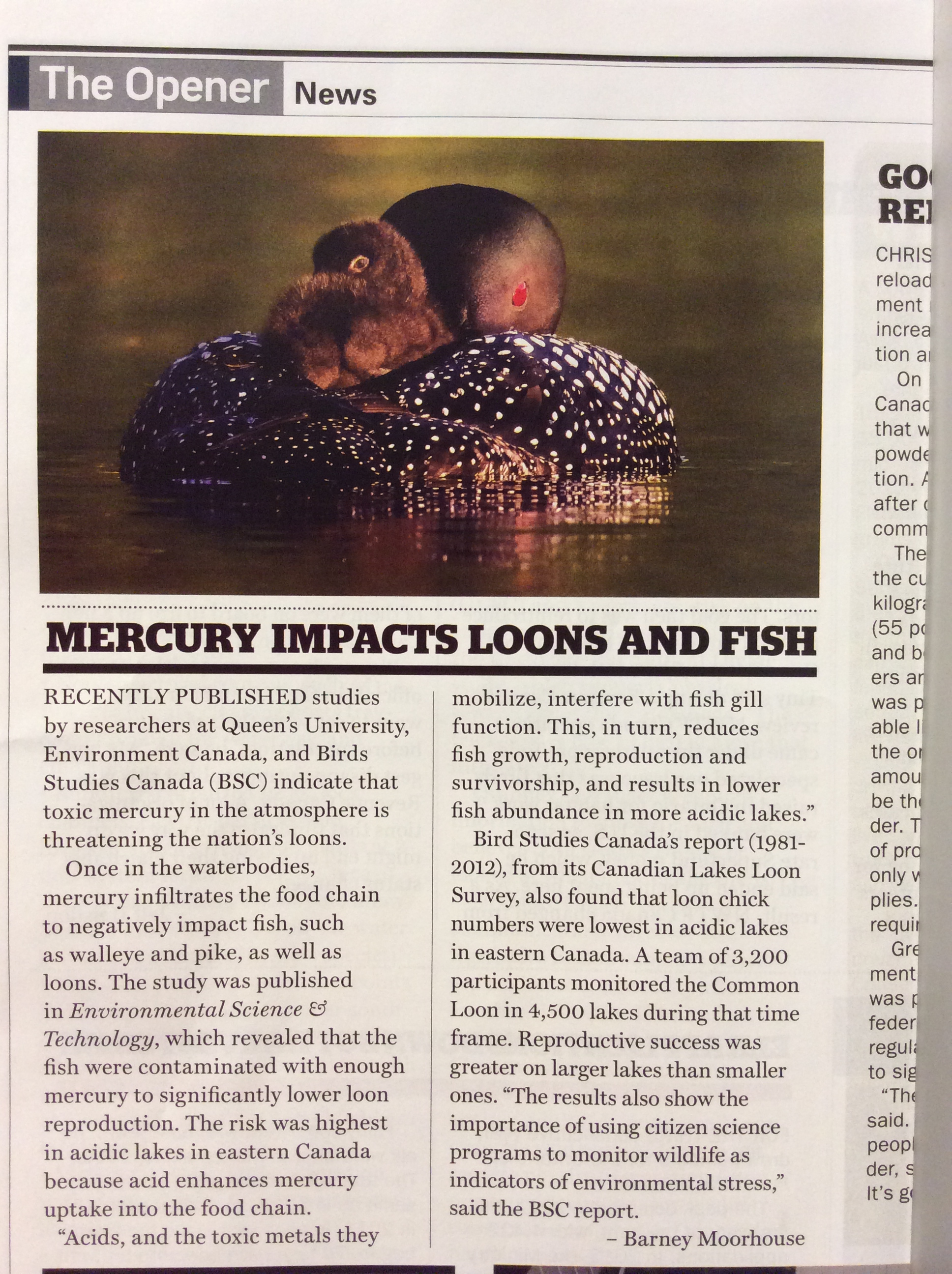 Freshwater fish mercury -  This Magazine Goes To All Ontario Federation Of Anglers And Hunters Members